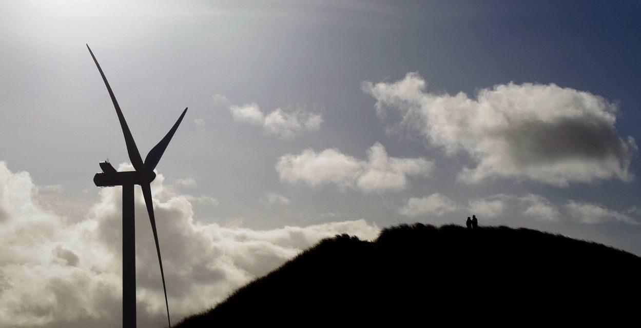 Vestas wins 50 MW order for Sandy Knowe wind project