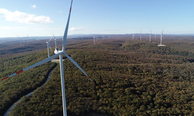Borusan EnBW Enerji commissioning 20 wind turbines in Turkey