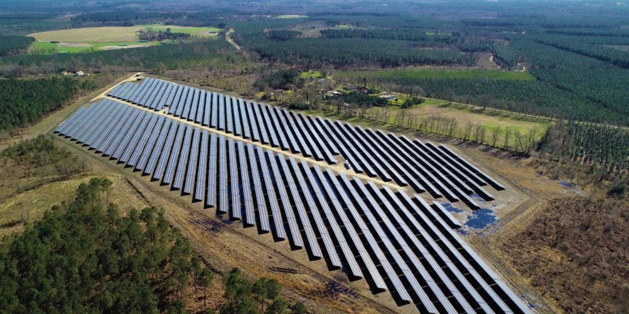 Neoen wins 81.6 MWp in solar projects in France