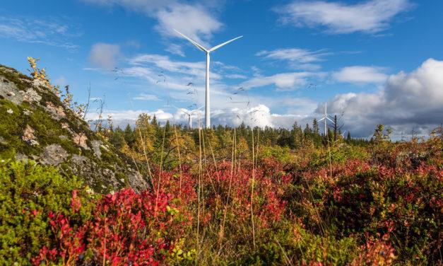 Siemens Gamesa notches third Swedish contract with BayWa r.e.