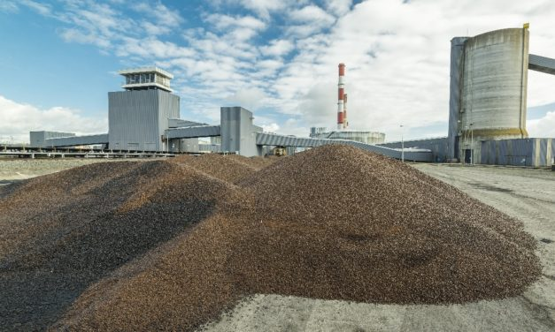 EDF, Meridiam and SIFCA sign for biomass plant in West Africa