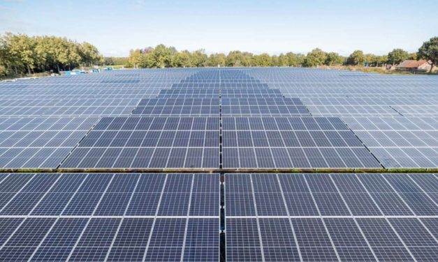 Smart combination of solar panels and strip cultivation